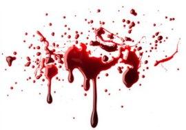 poça-de-sangue