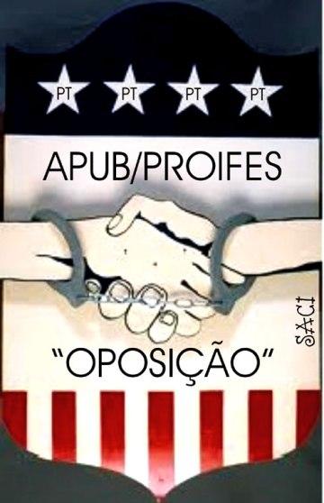 APUB-PROIFES