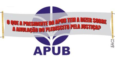 FAIXA-ANULAÇÃO-DO-PLEBISCIT