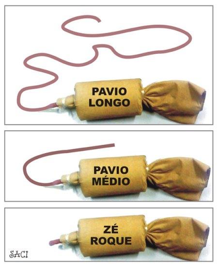 PAVIO-CURTO