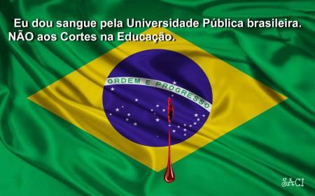 sangue pela educação
