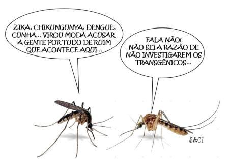 Mosquito expiatório