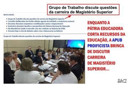 GRUPO DE TRABALHO APUB
