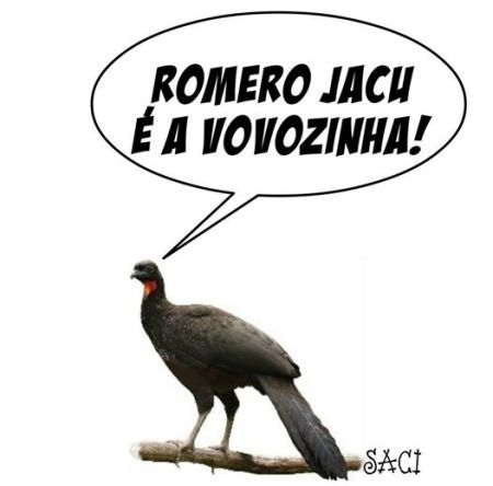 ROMERO JACU 2016