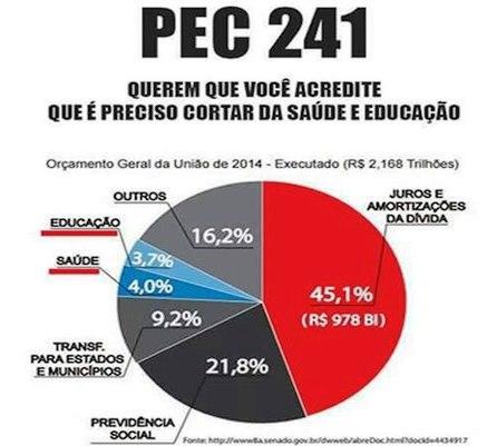 pec-241-grafico