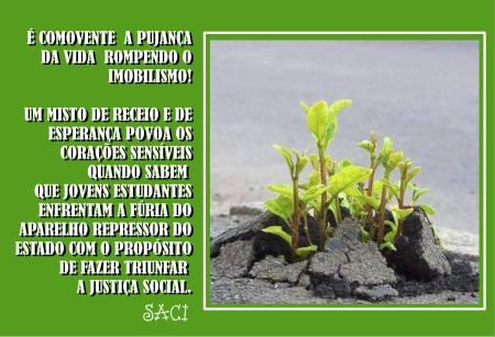 esperanca-16