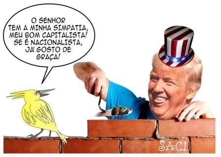 trump-e-o-pica-pau-17