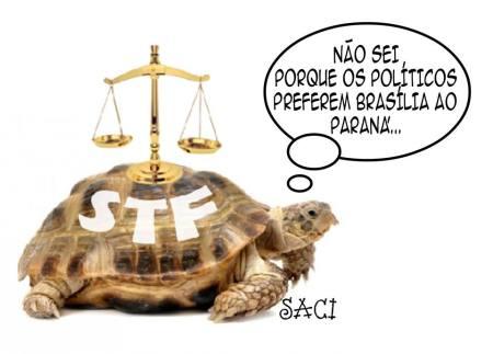 preferencia-17