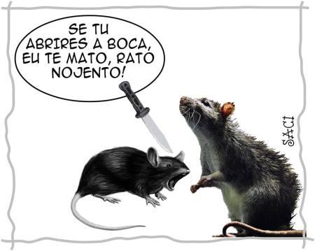 rato-17